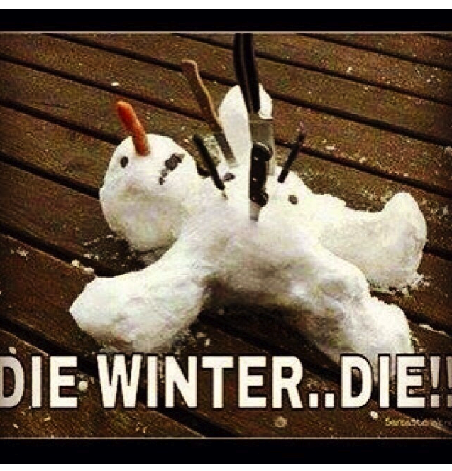 vibe-vixen-cold-weather-meme.png