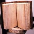 Könyv fából