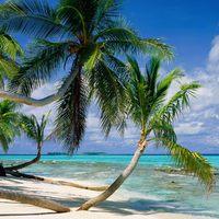 VISSZAJÁTSZÁS: A süllyedő sziget futballjának felemelkedése