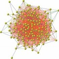 Kapcsolatok hálójában