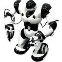 RoboSapien, FemiSapien és társaik