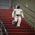 Robotfiú, evolúciós optimalizáció és az érzelmek