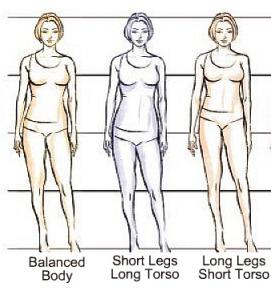 arányos torzó-láb, hosszabb torzó-rövidebb láb, rövidebb torzó-hosszabb láb