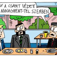 Védett a management-tel szemben?!