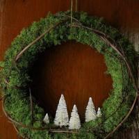 Nagy karácsonyfa-teszt! Szavazz!