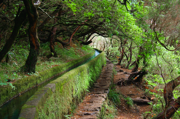 levada_madeira.png