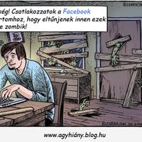 Facebook mániás