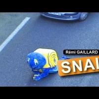 Rémi GAILLARD  trollkodik