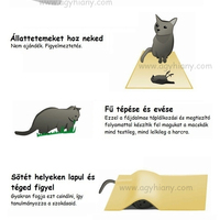 A gyilkos macska