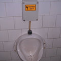 WC Fail