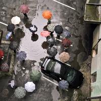 A legszimpatikusabb esernyő