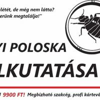 Ágyi poloska felkutatás - 9900Ft Budapesten -