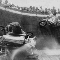 Oroszlán autózik a falon