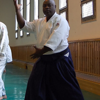 Hogyan került Magyarországra az aikido?