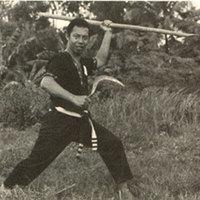 A Pencak Silat 9 leghalálosabb fegyvere - II. rész