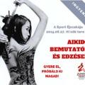 A Mozgás Éjszakája: ingyenes aikido-edzések és bemutató