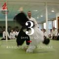 Nyári aikido edzőtábor: 3 nap van hátra