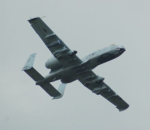 bw-29.jpg
