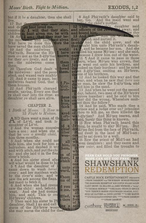 The-Shawshank-Redemption-the-shawshank-redemption-31138474-493-750.jpg