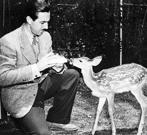 Walt-Disney-with-the-fawn-Bambi-that-was-kept-as-a-pet-at-The-Walt-Disney-Studios-and-studied-by-the-artists.jpg