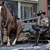 The Walking Dead- A járkálók harmadik éve