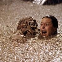 Húsz horrorfilmes érdekesség