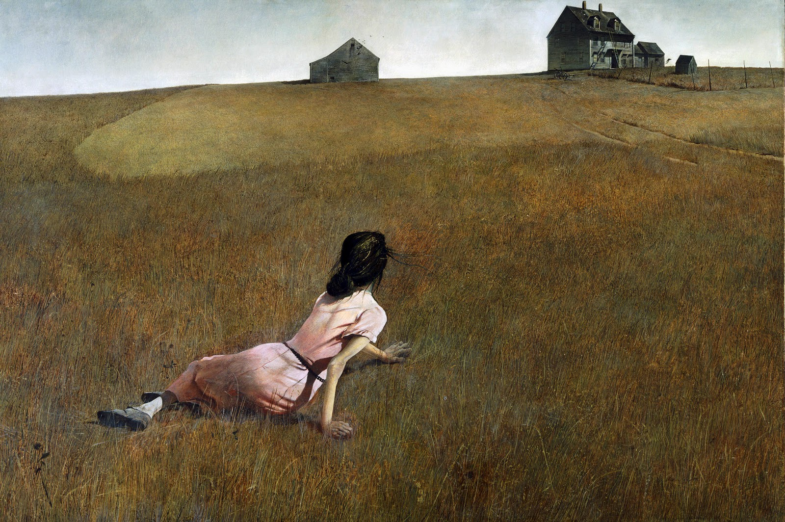 zzz_christinas_world_andrew_wyeth_large_image.jpg