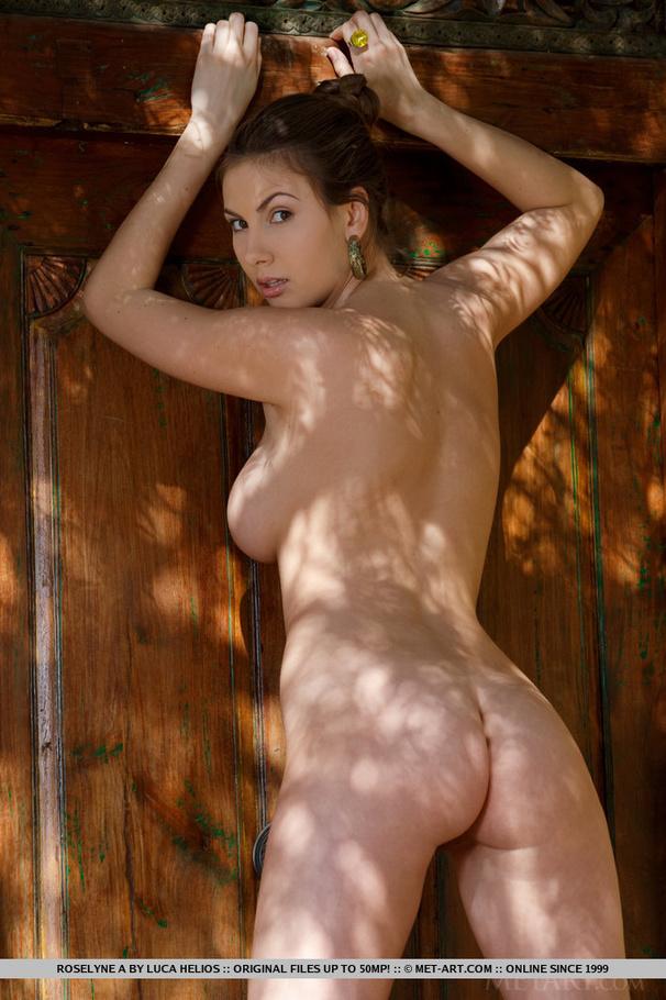 rosalyne_a5.jpg