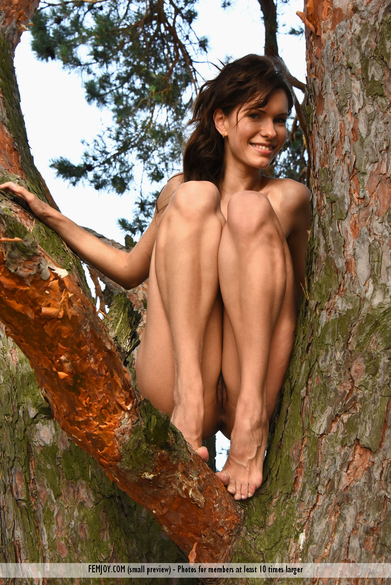 wild-susi-r-rubs-her-hairy-kitty-while-sitting-on-the-tree-04.jpg