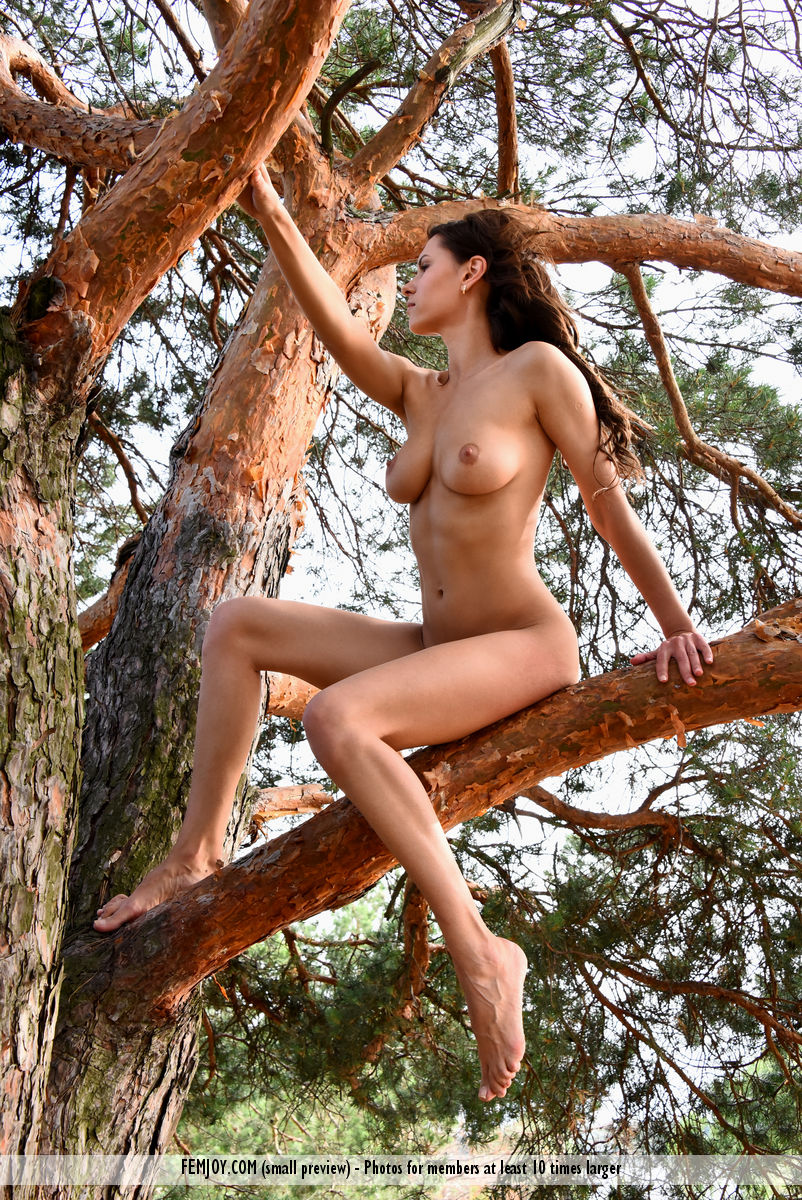 wild-susi-r-rubs-her-hairy-kitty-while-sitting-on-the-tree-05.jpg