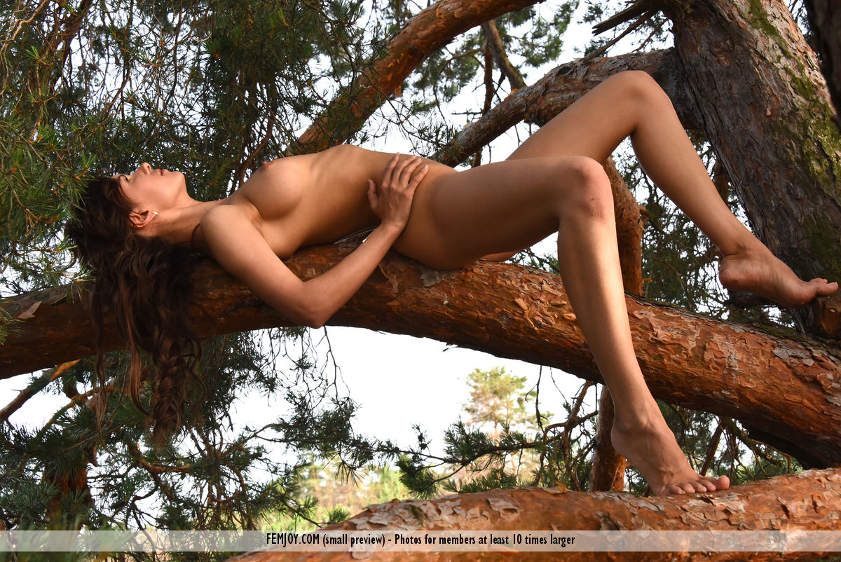 wild-susi-r-rubs-her-hairy-kitty-while-sitting-on-the-tree-06.jpg