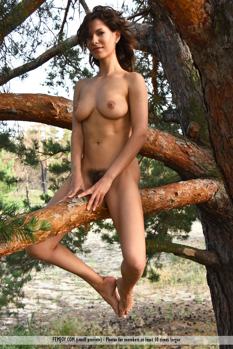 wild-susi-r-rubs-her-hairy-kitty-while-sitting-on-the-tree-08.jpg