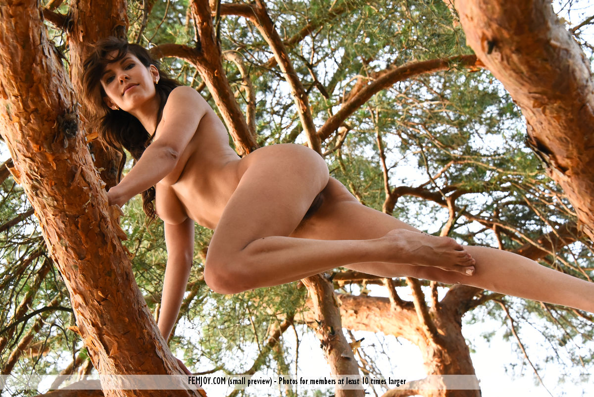 wild-susi-r-rubs-her-hairy-kitty-while-sitting-on-the-tree-13.jpg