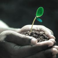 Növekedésünk záloga