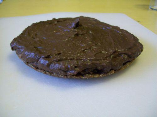 aligatorkörtes csokitorta.jpg