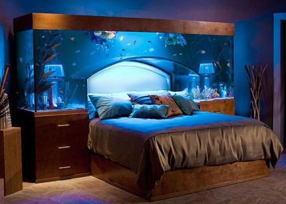 akvarium agy