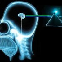 Fénnyel az agyba