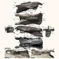 Ritka dinoszaurusz-maradvány került elő Ausztráliából