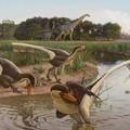 Újabb sarlóskarmú dinoszauruszt írtak le