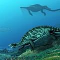 Összetettebbnek bizonyulhatott a teknősök evolúciója, mint korábban gondolták