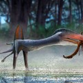 Gigantikus pteroszaurusz fosszíliái kerültek elő Mongóliából
