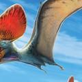 Egy hányattatott sorsú punk a pteroszauruszok között