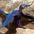 Gyík volt a négyszárnyú dinoszaurusz utolsó vacsorája