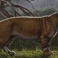 Hatalmas húsevő ősemlős kövületeit rejtette a múzeumi gyűjtemény