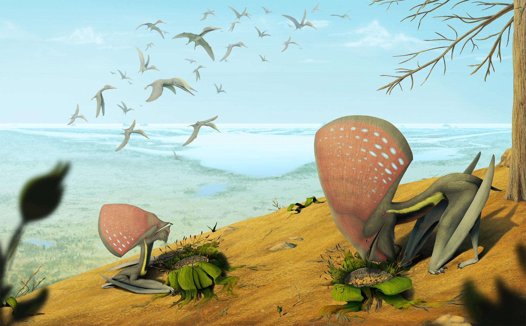 a_crato-formacio_pteroszauruszai_vitor_silva.jpg