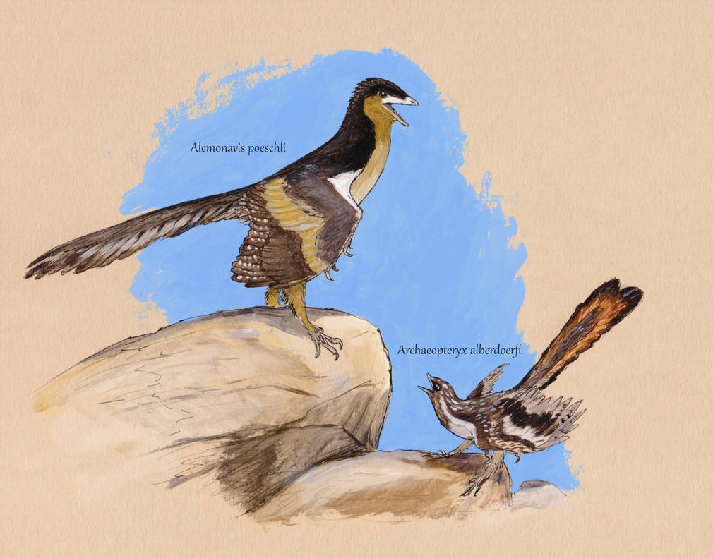 alcmonavis_poeschli_archaeopteryx_albersdoerfi_joschua_knuppe.jpg