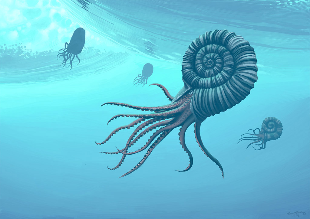 ammonitesz_simon_st_lenhag.jpg