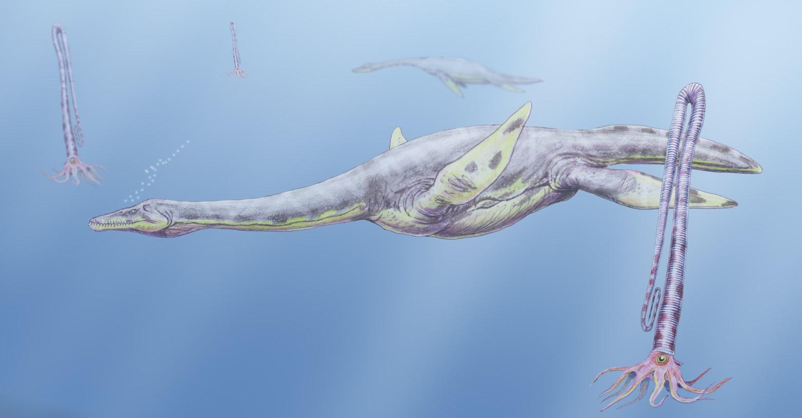antarktiszi_plezioszaurusz_fb.jpg