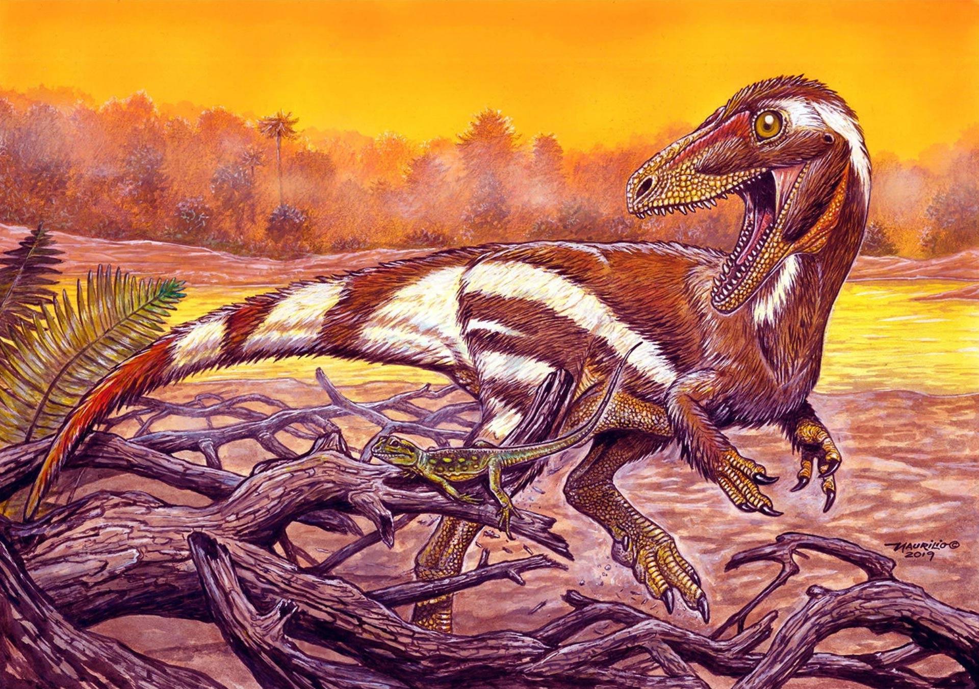 aratasaurus_museunacionali_maurilio_oliveira.jpg