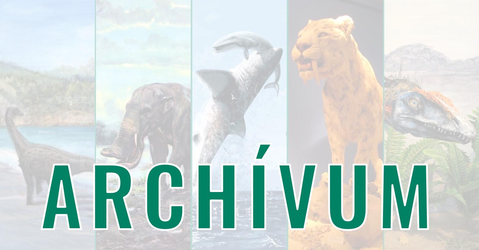 archivum_fb.jpg